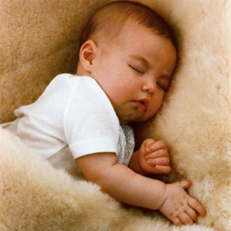 Baby's Lambskin Short-Shorn Wool Sleep Pad from Australia