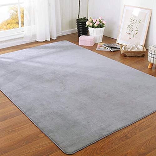 Susens Thickening Bedroom Living Room Bedside Rug Coffee Table Mat Area Rug