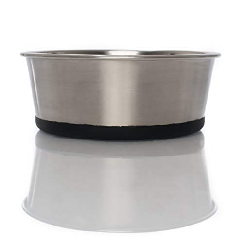 Food Grade Stainless Steel Pet Food & Water Bowl with Non-Skid Silicone Bottom, Beautiful Modern Design, Dishwasher-Safe