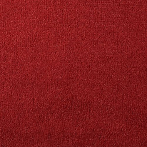 20 oz. Do-It-Yourself Boat Carpet – 8′ Wide x Various Lengths Choose Your Color & Length Red, 8′ x 12′