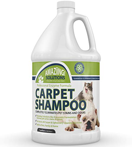 Amaziing Solutions Pet Carpet Shampoo Odor Eliminator and Stain Remover Carpet Cleaner for Dog Urine and Cat Pee, Professional Strength Enzymatic Solution, Natural Enzymes for Carpet Gallon