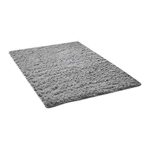 PASHY Fluffy Shag Area Rugs for Bedroom Bed and Living Room Household Blanket Soft Faux Fur Rug Non Slip Floor Carpets