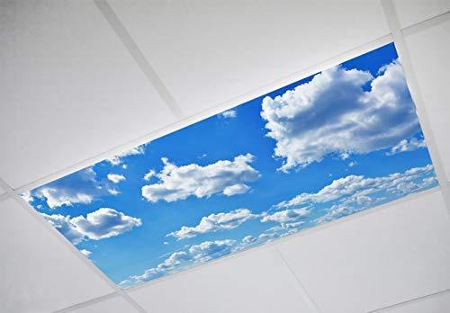 Top 9 Fluorescent Light Diffuser – Close To Ceiling Light Fixtures