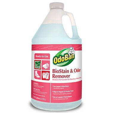 OdoBan BioStain and Odor Remover 1 gal.